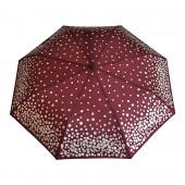 Parapluie bordeaux, pièces d'argent