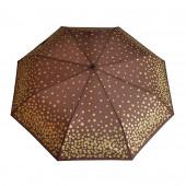 Parapluie marron, pièces d'or