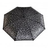 Parapluie noir, pièces d'argent