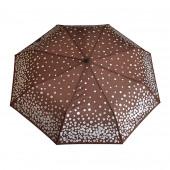 Parapluie marron, pièces d''argent