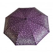 Parapluie violet, pièces d'argent